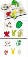 A delightful lift out peg puzzle which displays popular stirfry vegetables whole and prepared for cooking.  Ideal for healthy eating and five a day topics.  SAVE ALMOST 50% ON CATALOGUE PRICES